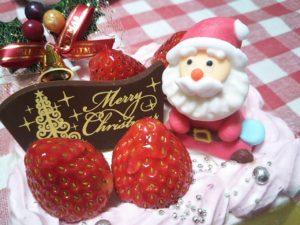 ハッピーメリークリスマス!